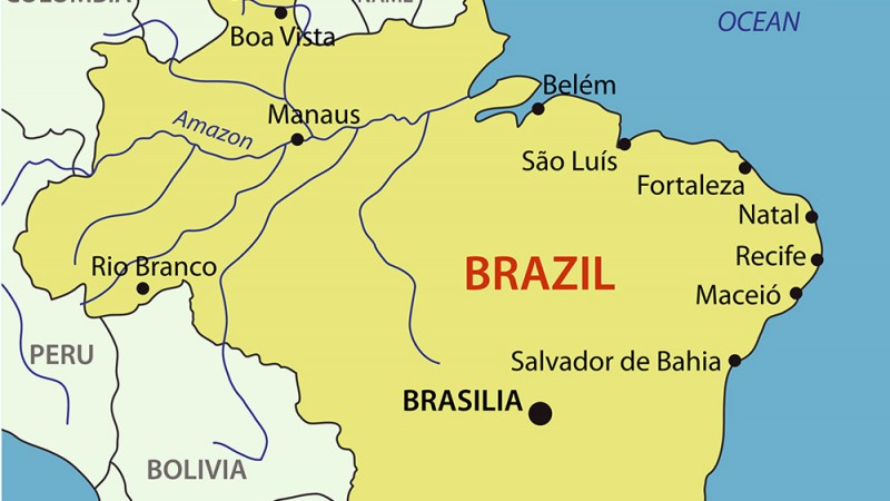 Brazil---pavalena