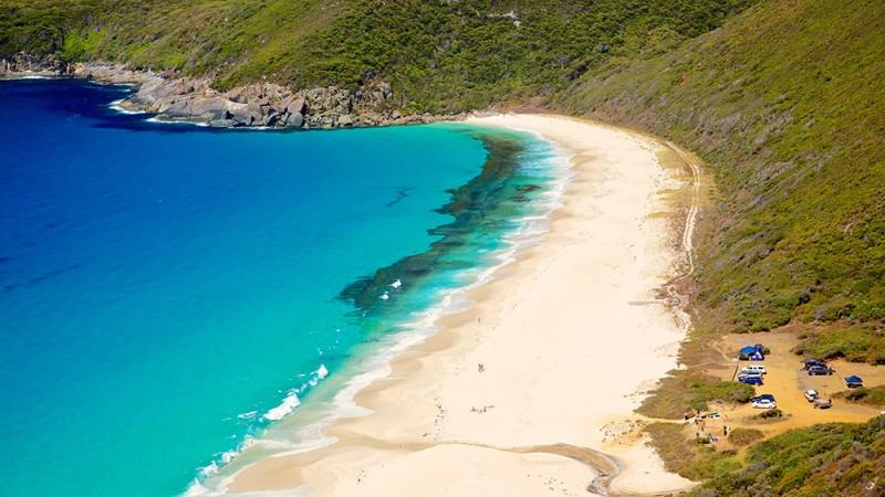 Shelley-Beach---Manly,-Australia