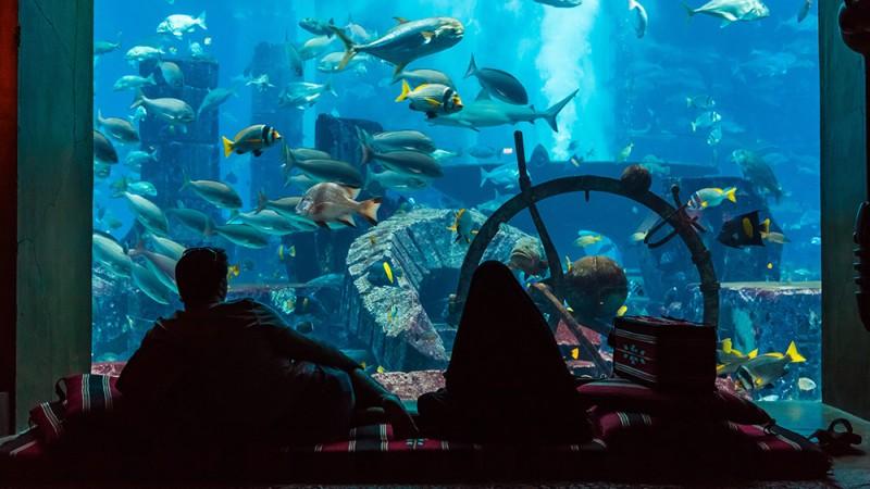 Underwater-Hotel,-Dubai