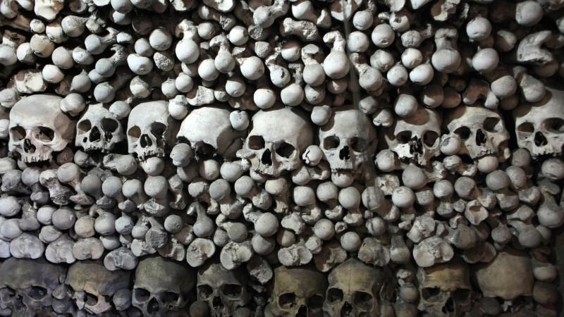Stacked Bones
