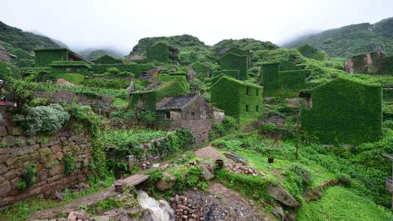 Shi_Kaiming / Shutterstock.com