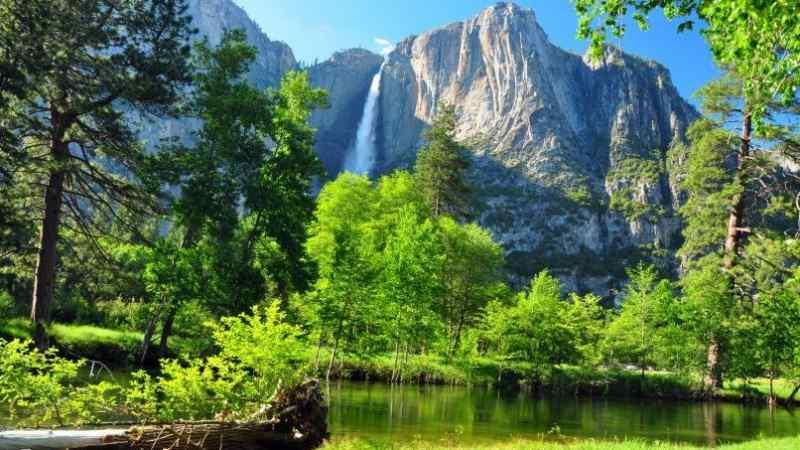 EastVillage Images / Shutterstock.com