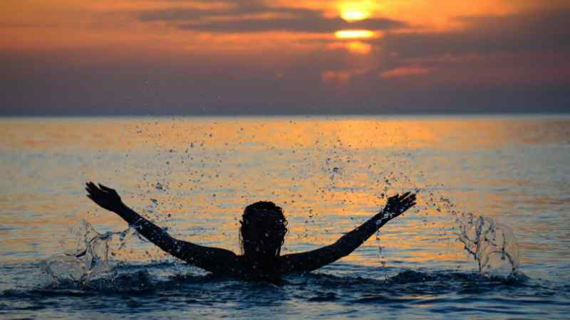 AAresTT / Shutterstock.com