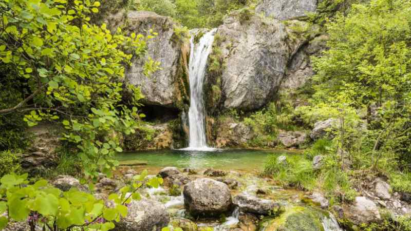 RODKARV / Shutterstock.com