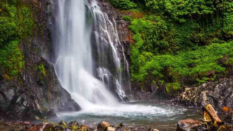 caminoel / Shutterstock.com
